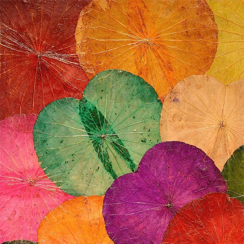 Lotus Leaf Wall Art (32)