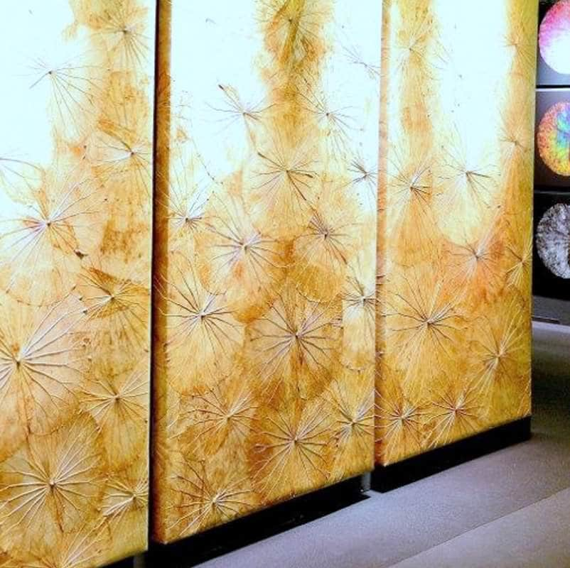 Lotus Leaf Wall Art (42)